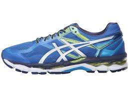asics-gel-surveyor-5